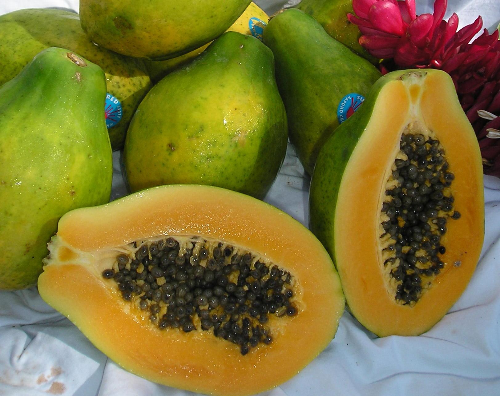 Hawaii papaya